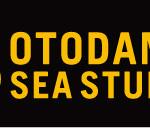 山﨑彩音 7月31日(火) 海の家の音楽イベント「OTODAMA SEA STUDIO」に出演決定!