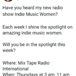 Indie Music Woman(California, US)